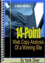 14-point web copy analysis